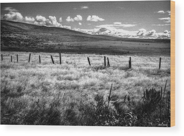 Oregon Wood Print featuring the photograph Medicine Springs Fenceline by Paul Haist
