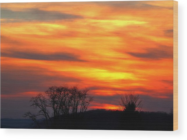 Sunset Wood Print featuring the photograph Painted Sunset by David Jones