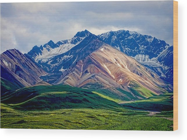 Denali Wood Print featuring the photograph Alaskan Range by Heather Applegate