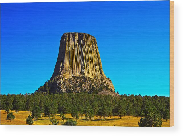 Wyoming Wood Print featuring the photograph Devil's Tower by N D Finer