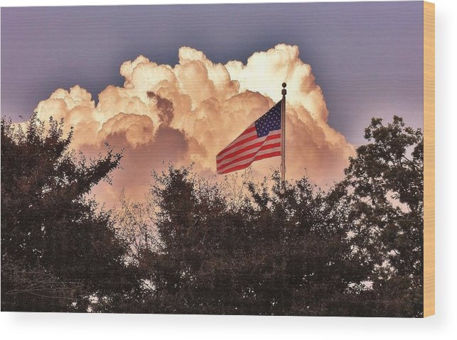 Landscape Wood Print featuring the photograph Home Of The Brave by Diana Chason