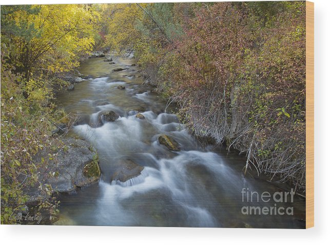 Idaho Wood Print featuring the photograph Palisades Autumn by Idaho Scenic Images Linda Lantzy