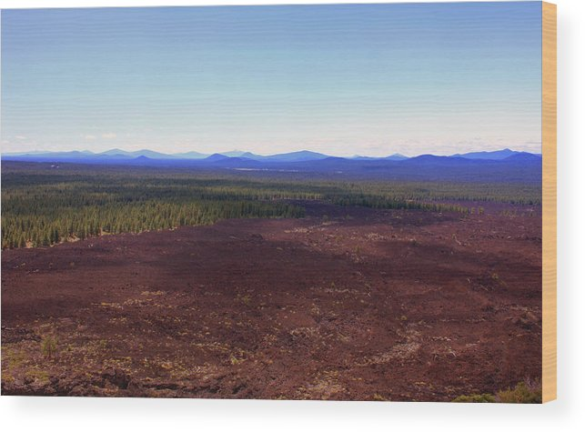 Lava Wood Print featuring the photograph Red Lava Bed by Kami McKeon