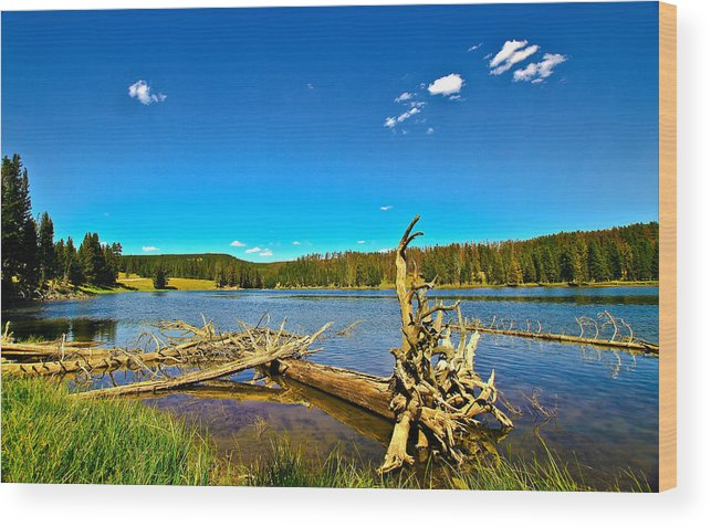 Wyoming Wood Print featuring the photograph Yellowstone River by N D Finer