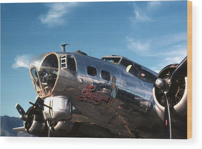 B17 Wood Print featuring the photograph Sentimental Journey by Spencer Bush