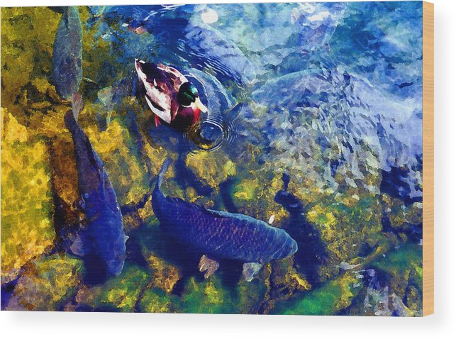 River Wood Print featuring the photograph Duck And Carp Wc 2 by Lyle Crump