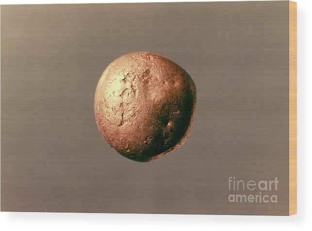 1100 B.c. Wood Print featuring the photograph Electrum Nugget, C1100 B.c by Granger