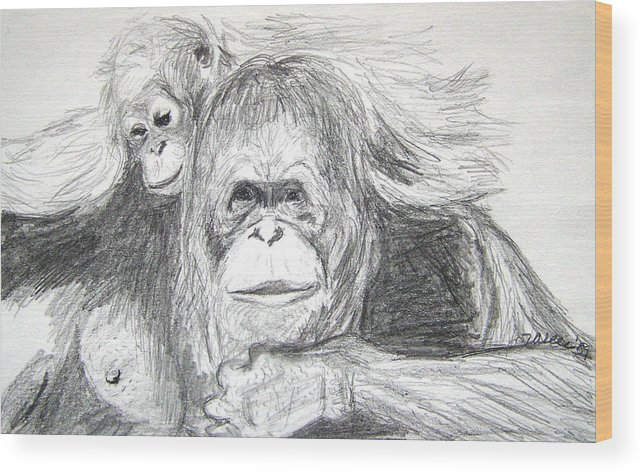 Wildlife Wood Print featuring the drawing Gorillas by Vallee Johnson
