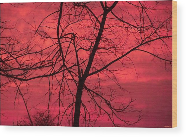 Sunset Wood Print featuring the photograph Hello Evening by Evelyn Patrick