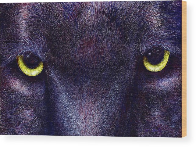 Cats Wood Print featuring the painting Hyptnotist The Black Panther by JoLyn Holladay
