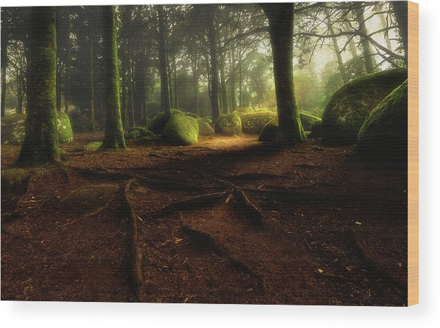 Sintra Wood Print featuring the photograph Just Listen by Jorge Maia
