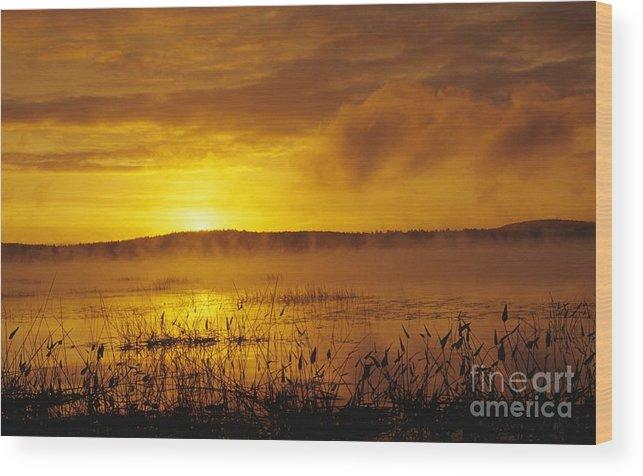 Sunrise Wood Print featuring the photograph Lake Massabesic - Auburn New Hampshire Usa by Erin Paul Donovan