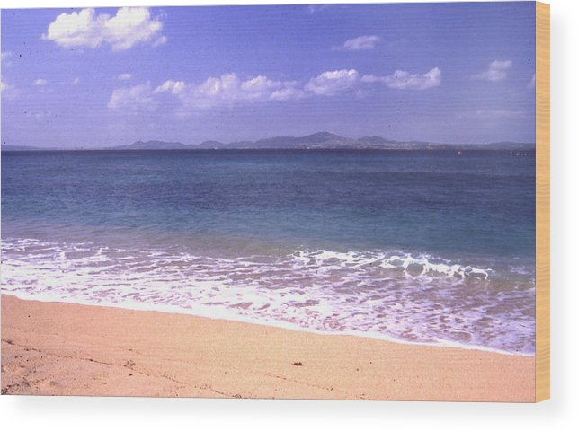 Kinawa Wood Print featuring the photograph Okinawa Beach 16 by Curtis J Neeley Jr