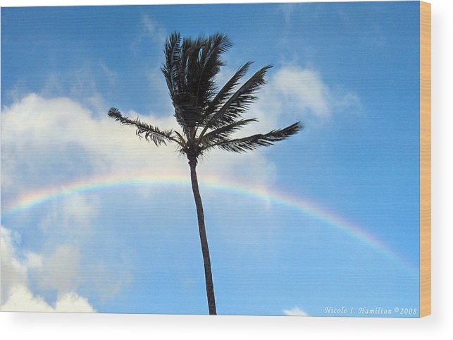 Palm Tree Wood Print featuring the photograph Palm Tree In The Sky by Nicole I Hamilton
