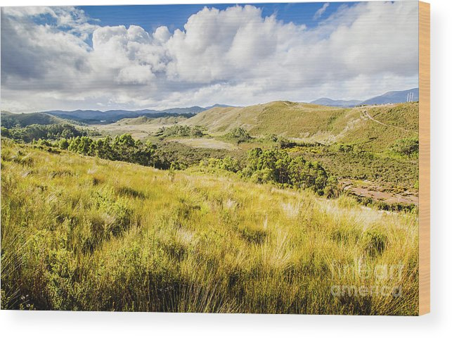 Landscape Wood Print featuring the photograph Parting Creek Regional Reserve Tasmania by Jorgo Photography - Wall Art Gallery
