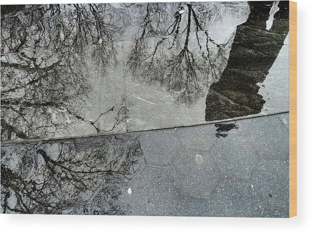 Puddle Wood Print featuring the photograph Puddle Reflection by Katia Lima