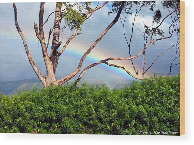 Rainbow Wood Print featuring the photograph Rainbow In The Trees by Nicole I Hamilton