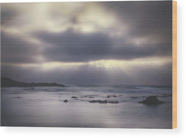 Pescadero Wood Print featuring the photograph Reckoning by Laurie Search