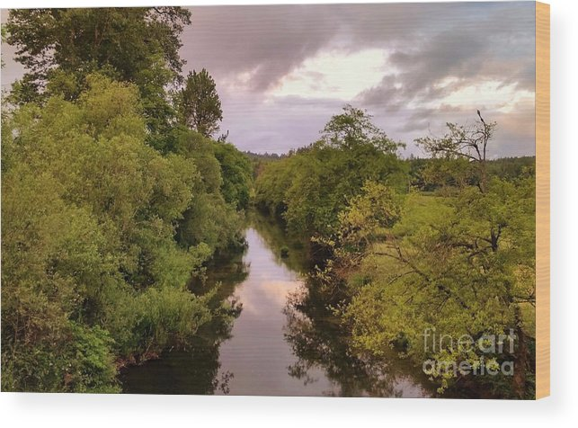 Landscape Wood Print featuring the photograph Sunset Reflection by Jane Powell