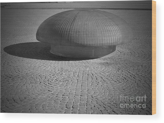 Mushroom Wood Print featuring the photograph Shrooming In Leipzig by Jost Houk