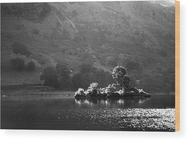 Black And White Wood Print featuring the photograph Summer Lake by Terence Davis