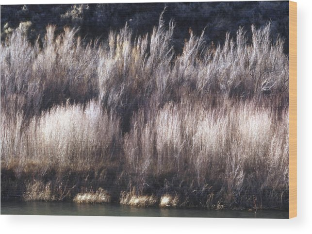 Landscape Wood Print featuring the photograph River Sage by Lynard Stroud