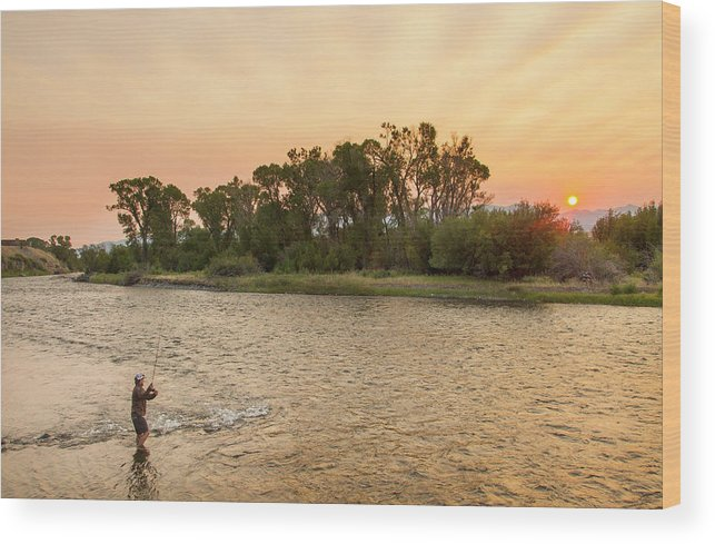 Chuck Haney Wood Print featuring the photograph Reid Sabin Fly Fishing At Sunrise by Chuck Haney