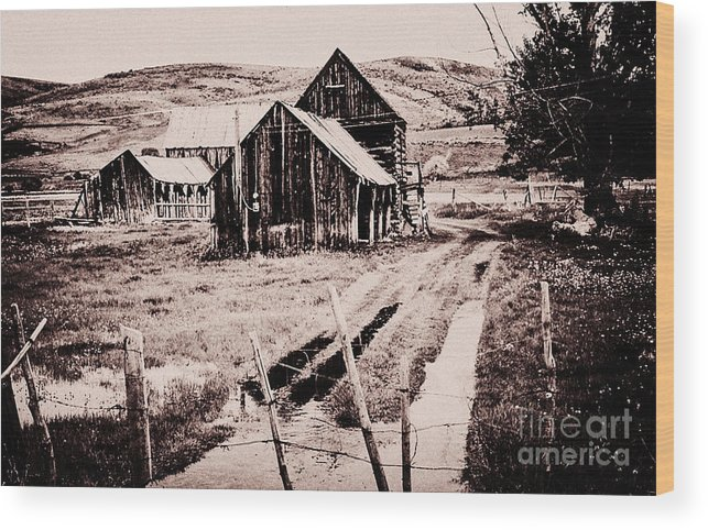 Landscape. Sky Wood Print featuring the photograph 869 Se A Bit Of Country 4 by Chris Berry