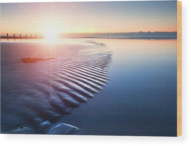 Beach Wood Print featuring the photograph Blue by Matthew Gibson