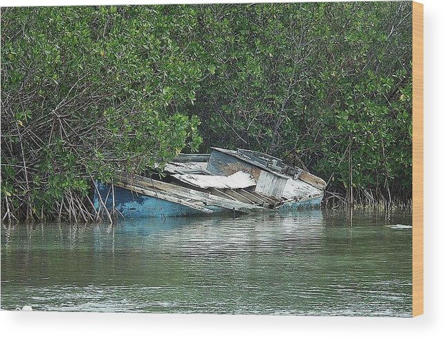 Bahamas Wood Print featuring the photograph Boat Abandoned In The Mangroves Long Island Bahamas by Genevieve Diamond