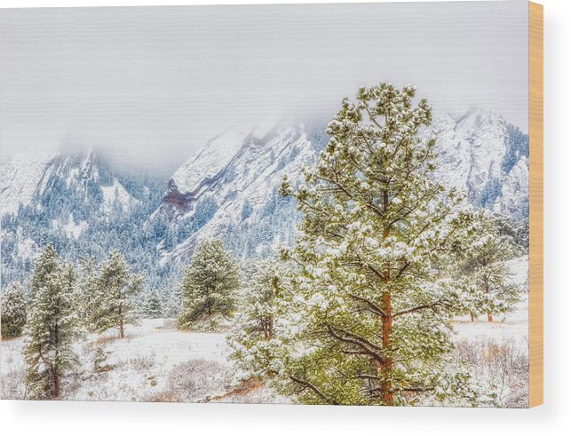 Boulder Landscapes Wood Print featuring the photograph Foggy Flatirons by Ed Fiske