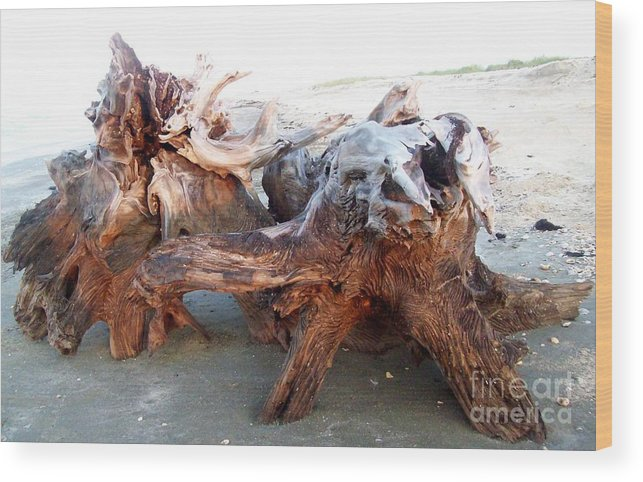 Beach Wood Print featuring the photograph Gnarly by Lelan Gimnick