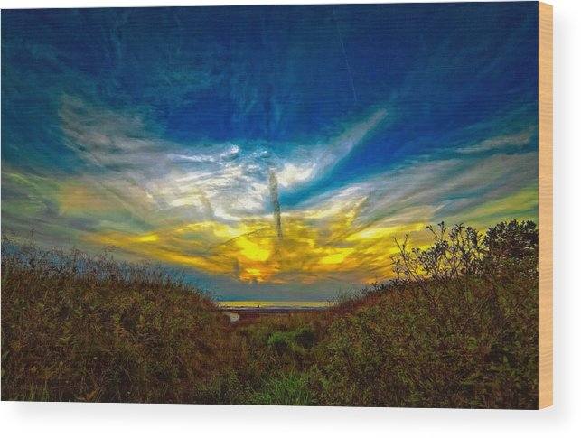 Sunset Wood Print featuring the photograph Huron Evening 2 Oil by Steve Harrington
