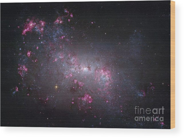 Astronomical Wood Print featuring the photograph Irregular Galaxy Ngc 4449, Hubble Image by Robert Gendler