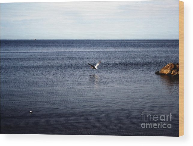 Landscape Wood Print featuring the photograph Mobile Bay 5 by Earl Johnson