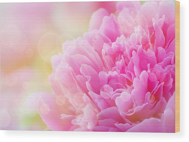 Art Wood Print featuring the photograph Pink Dream by Joan Han