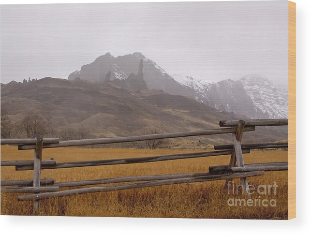 Hoo Doos Wood Print featuring the photograph Snowing On The Hoo Doos  #4339 by J L Woody Wooden