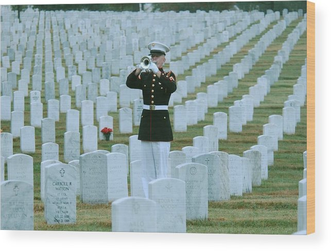 Arlington National Cemetery Wood Print featuring the photograph Taps by Mountain Dreams
