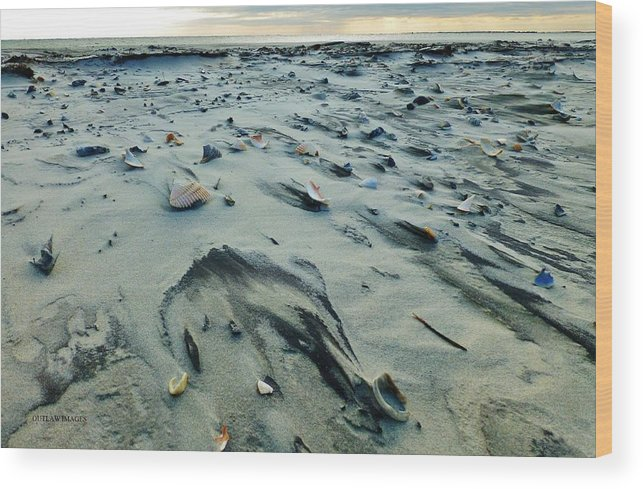 Beach Wood Print featuring the photograph Windblown Beach by Holly Dwyer