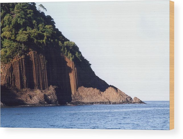 Madagascar Wood Print featuring the photograph Out Of The Blue by Robert M Brown II