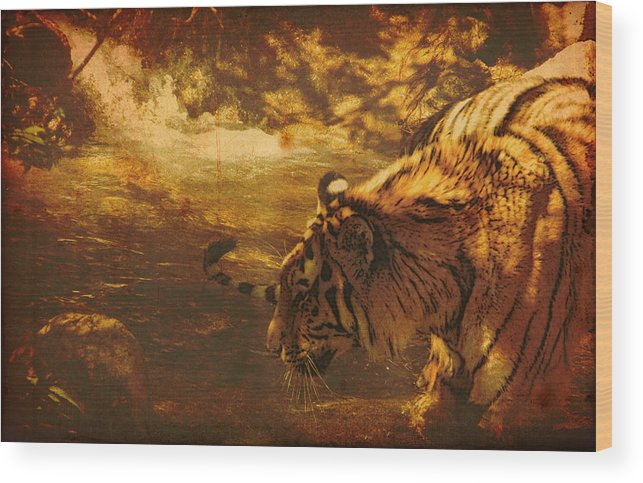 Tiger Wood Print featuring the digital art Tiger In The River by James Wood