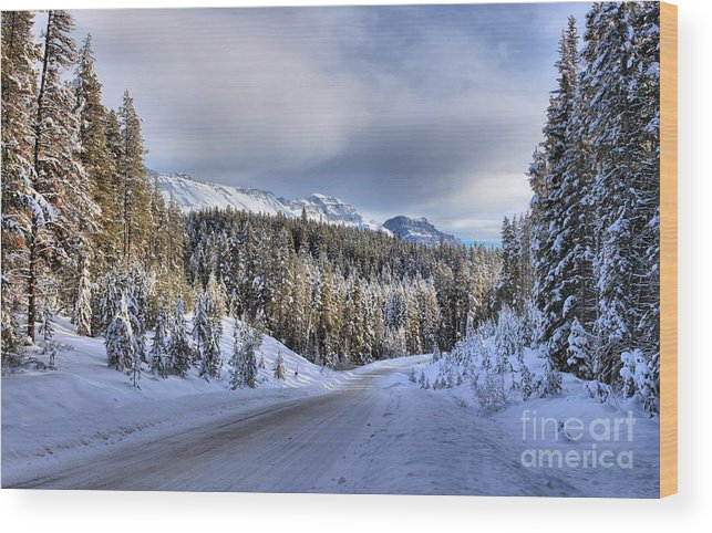Bow Valley Wood Print featuring the photograph Bow Valley Parkway Winter Conditions by Adam Jewell
