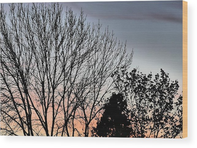 Idaho Sunsets Skyflowers Paul Stanner Wood Print featuring the photograph Horizon by Paul Stanner