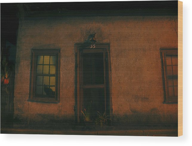 Black Cat Wood Print featuring the photograph A Black Cat's Night by David Lee Thompson