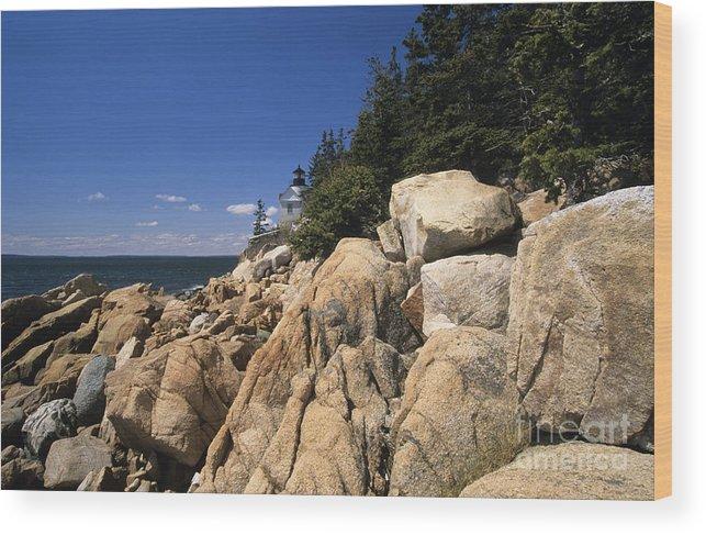 Acadia National Park Wood Print featuring the photograph Acadia National Park Maine - Bass Harbor Head Lighthouse by Erin Paul Donovan