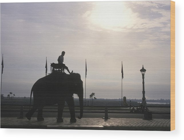 Royal Palace Wood Print featuring the photograph An Elephant At The Royal Palace by Richard Nowitz
