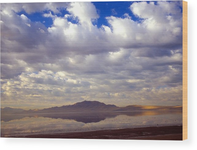 Great Salt Lake Wood Print featuring the photograph Antelope Island 1 by Steve Ohlsen