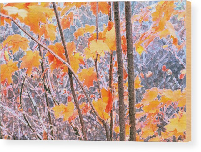 Autumn Wood Print featuring the digital art Autumn Leaves 2 Pdae by Lyle Crump