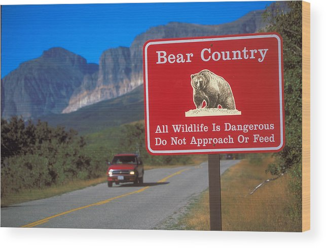 Red Wood Print featuring the photograph Bear Country In Montana by Carl Purcell
