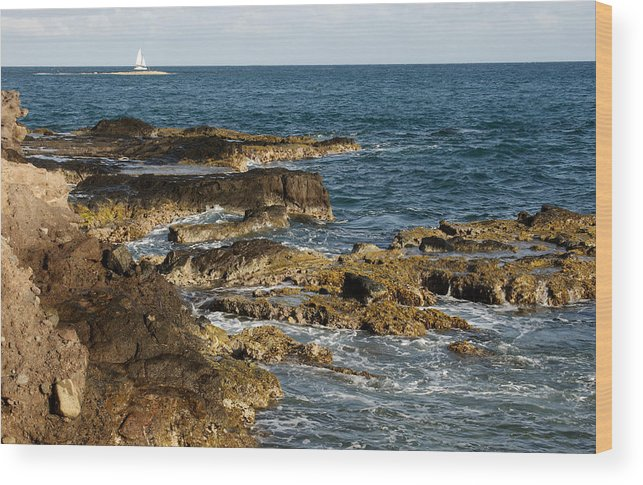 Sailboat Wood Print featuring the photograph Black Rock Point And Sailboat by Jean Macaluso